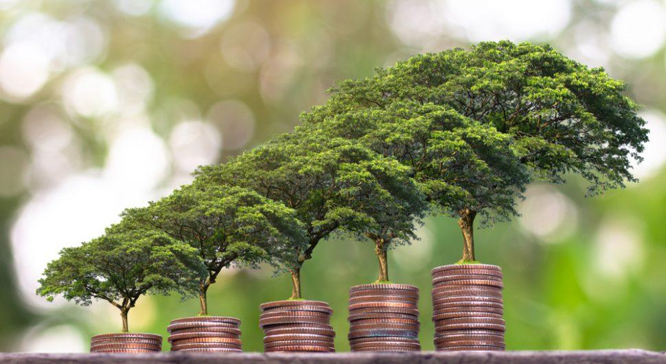 Como alcançar uma vida financeira sustentável